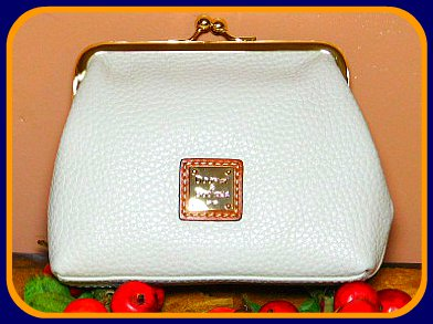 Framed Dooney Accessory Purse