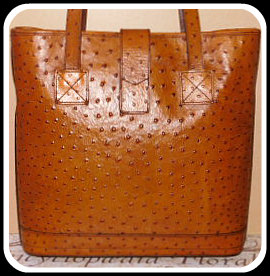 Apricot Essence Dooney Ostrich Large Satchel Shopper