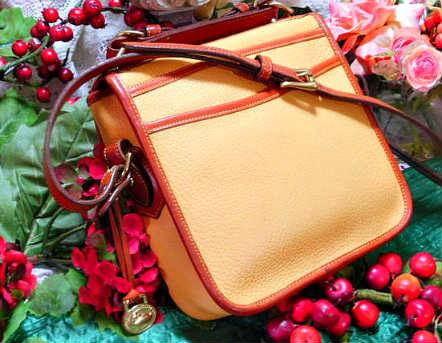 Vintage Dooney and Bourke All-Weather Leather®  Carrier Shoulder Bag  Square Carrier