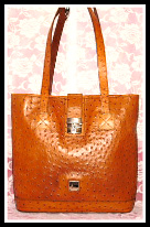 Apricot Essence Dooney Ostrich Large Satchel Shopper-Dooney Ostrich Shopper,Dooney Ostrich Large Satchel Shopper
