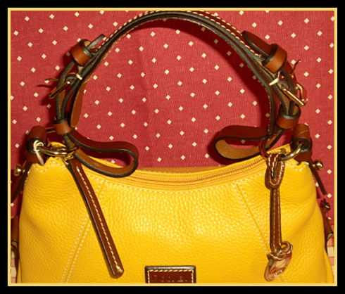New Mini East-West Souch Dooney Bourke AWL Bag