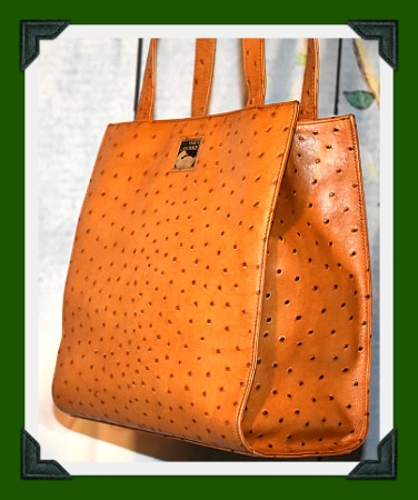 Dooney and Bourke  Ostrich North-South Tote